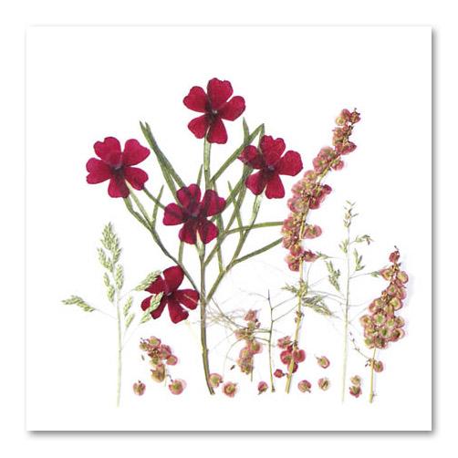 Flower Art (vierkant dubbel)