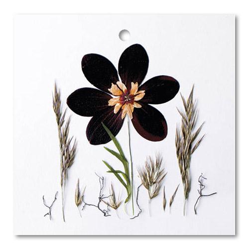Flower Art (vierkant enkel)