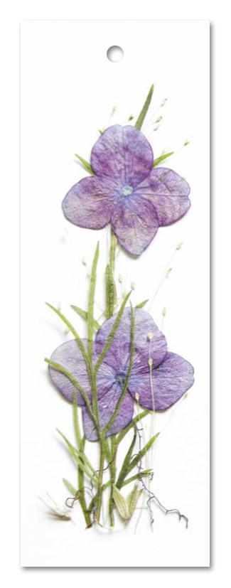 Flower Art (label enkel)
