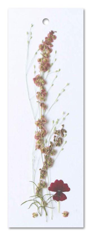 Flower Art (label dubbel/touwtje)