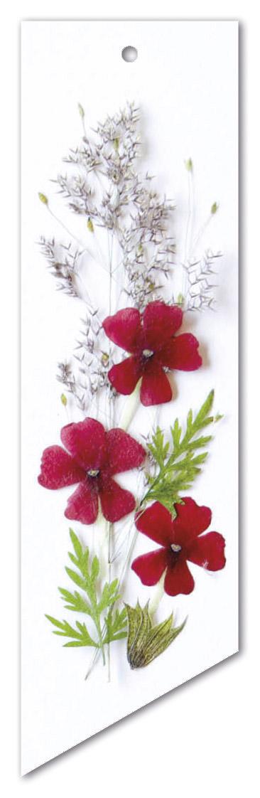 Flower Art (label dubbel met lint)