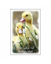 DGVN 060 Een zakje vol lentegroetjes