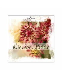 Pure & Natural Kleurrijk 36 Nieuwe Baan