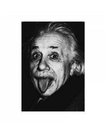 Black & White 2-25 Einstein