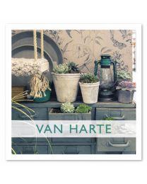Anne 12 Van Harte