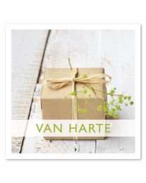 Anne 17 Van Harte