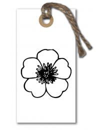 Ieniemini 37 Blanco (bloem)
