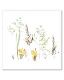 Flower Art 34