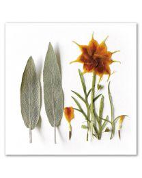 Flower Art 37