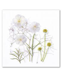 Flower Art 41
