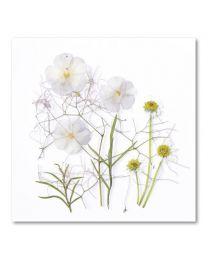 Flower Art D-24