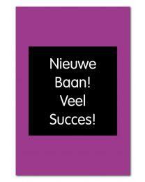 Joy! 16 Nieuwe Baan! Veel Succes!