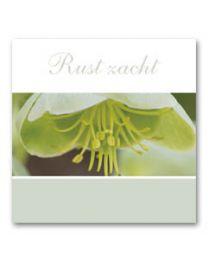 Condoleance (V) 02 Rust Zacht