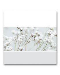 Condoleance (V) 03 Blanco