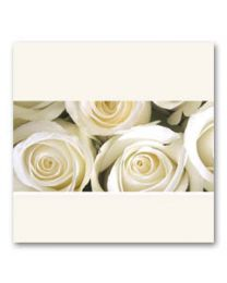 Condoleance (V) 07 Blanco