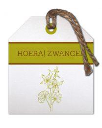 Flow (T) 19 Hoera! Zwanger