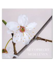 Moments 02 Met oprecht medeleven