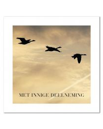 Moments 28 Met innige deelneming
