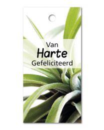 Green mini 08 Van Harte gefeliciteerd