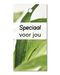 Green mini 13 Speciaal voor jou
