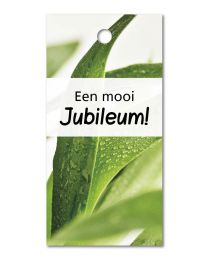 Green mini 26 Een mooi Jubileum!