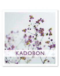 Kadobon 11