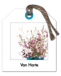 Fleur 03 Van Harte