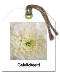 Fleur 26 Gefeliciteerd