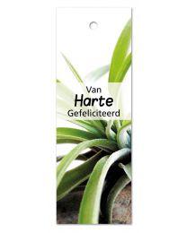 Green 08 Van Harte Gefeliciteerd