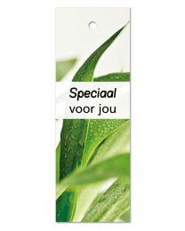 Green 13 Speciaal voor jou