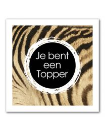 Stripes Vierkant 25 Je bent een Topper